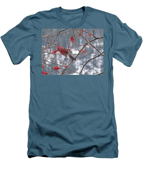 Pine Grosbeak And Mountain Ash Men's T-Shirt (Athletic Fit)