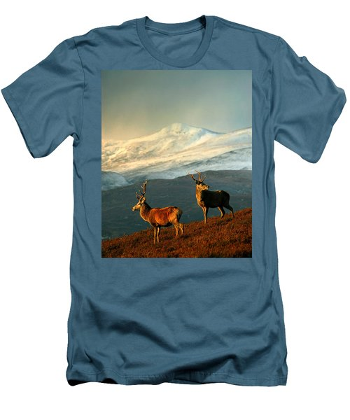 Red Deer Stags Men's T-Shirt (Athletic Fit)