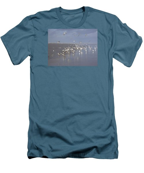 Birds At The Beach Men's T-Shirt (Athletic Fit)