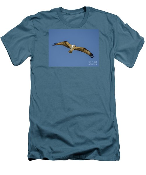 Men's T-Shirt (Slim Fit) featuring the photograph Osprey In Flight Spreading His Wings by Dale Powell