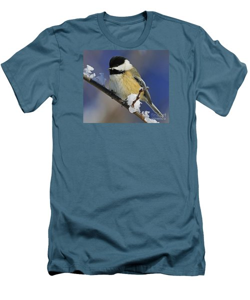 Winter Chickadee... Men's T-Shirt (Slim Fit) by Nina Stavlund