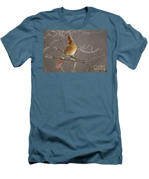 Female Northern Cardinal Men's T-Shirt (Athletic Fit)