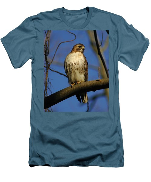 Men's T-Shirt (Slim Fit) featuring the photograph A Red Tail Hawk by Raymond Salani III