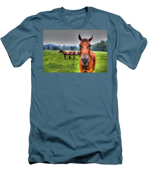A Starring Horse Men's T-Shirt (Athletic Fit)