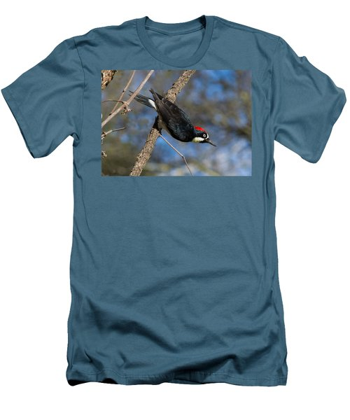 Men's T-Shirt (Slim Fit) featuring the photograph Acorn Woodpecker by Rima Biswas