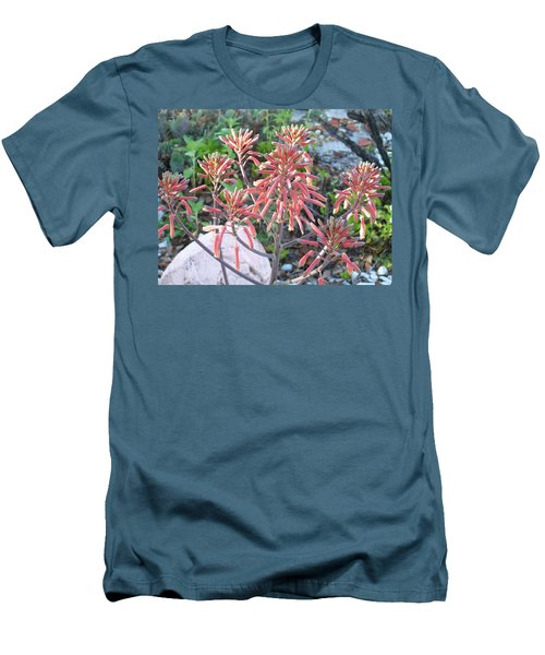 Men's T-Shirt (Slim Fit) featuring the photograph Aloe In Bloom by Belinda Lee