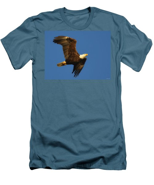 American Bald Eagle Close-ups Over Santa Rosa Sound With Blue Skies Men's T-Shirt (Slim Fit) by Jeff at JSJ Photography