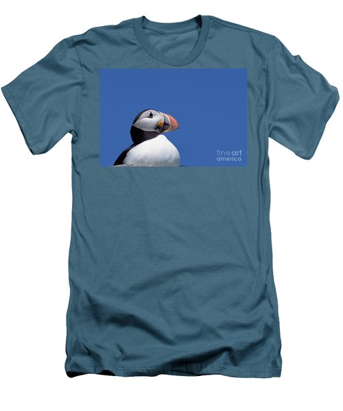Atlantic Puffin In Breeding Colors Men's T-Shirt (Athletic Fit)