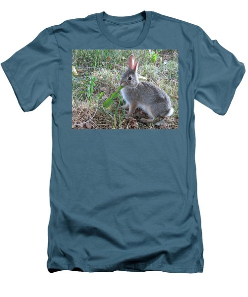 Baby Bunny Eating Dandelion #01 Men's T-Shirt (Slim Fit) by Ausra Huntington nee Paulauskaite