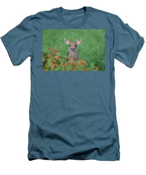 Baby Fawn In Yard Men's T-Shirt (Slim Fit) by Kym Backland