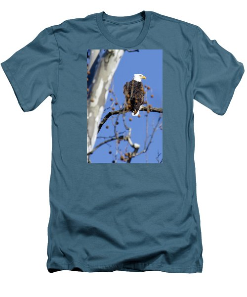 Men's T-Shirt (Slim Fit) featuring the photograph Bald Eagle by David Lester