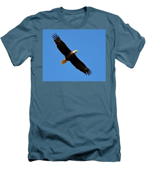 Best Bald Eagle On Blue Men's T-Shirt (Slim Fit) by Jeff at JSJ Photography