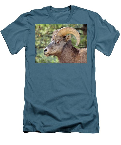 Men's T-Shirt (Slim Fit) featuring the photograph Big Horn by Lynn Sprowl