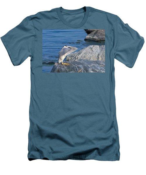 Black Crowned Night Heron Men's T-Shirt (Slim Fit) by Greg Graham