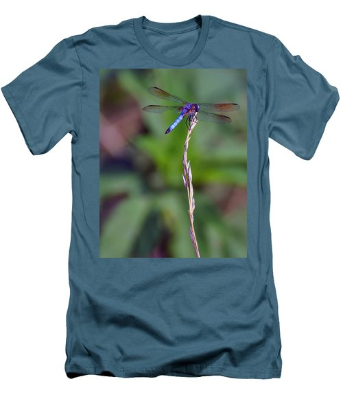 Blue Dragonfly On A Blade Of Grass  Men's T-Shirt (Slim Fit) by Chris Flees