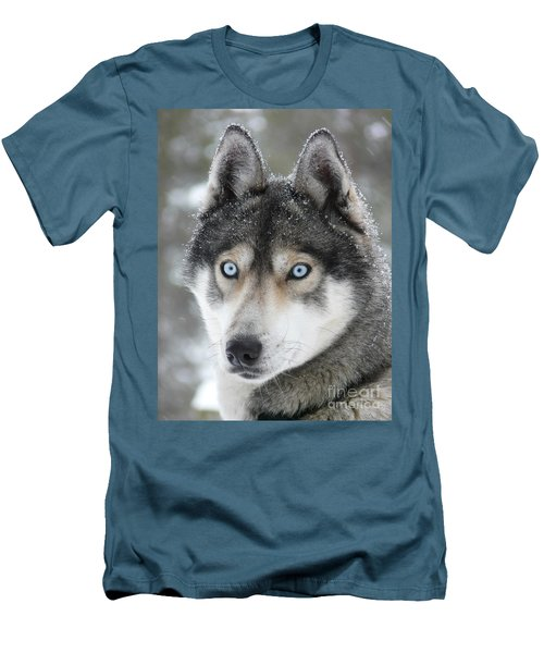 Blue Eyes Husky Dog Men's T-Shirt (Athletic Fit)