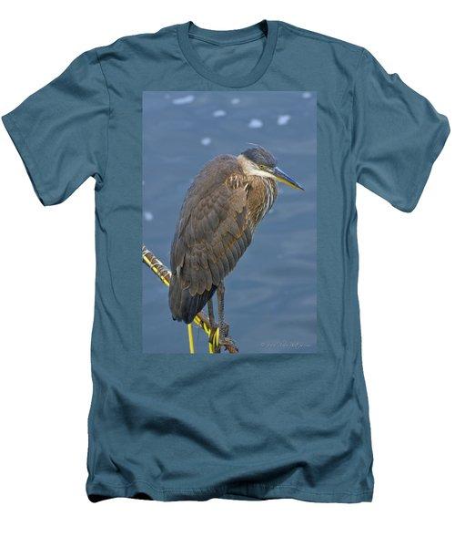 Blue Herron Men's T-Shirt (Athletic Fit)