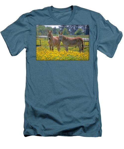 Burros In The Buttercups Men's T-Shirt (Slim Fit) by Suzanne Stout
