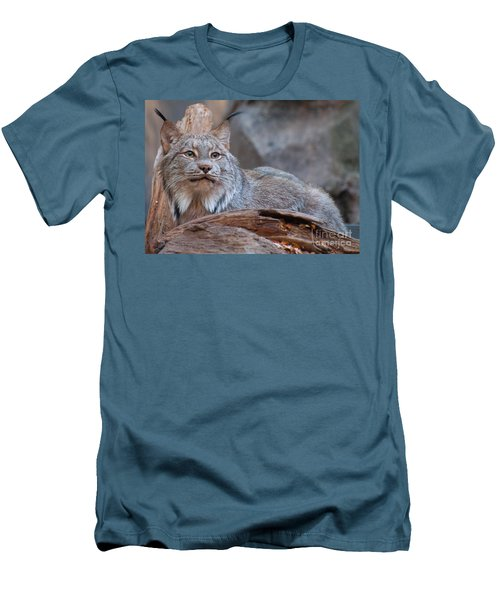 Canada Lynx Men's T-Shirt (Athletic Fit)