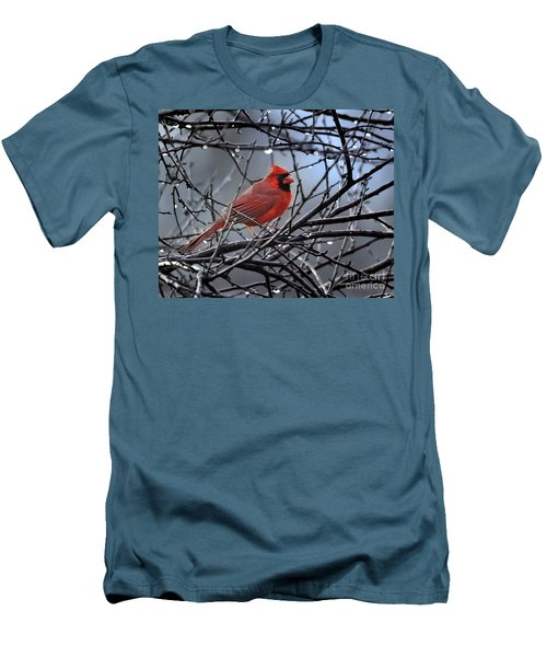 Cardinal In The Rain   Men's T-Shirt (Slim Fit) by Nava Thompson