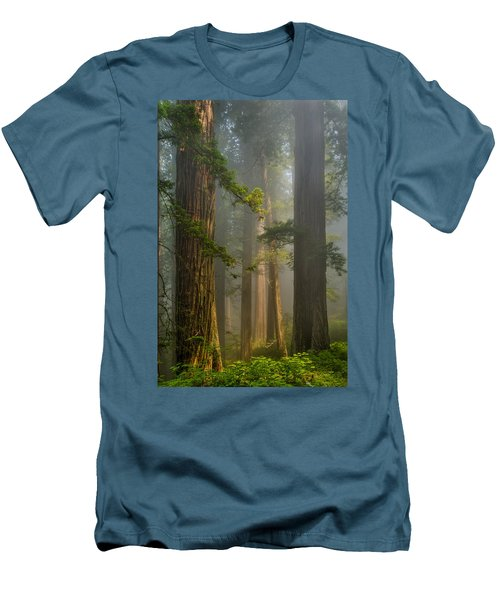 Center Of Forest Men's T-Shirt (Athletic Fit)