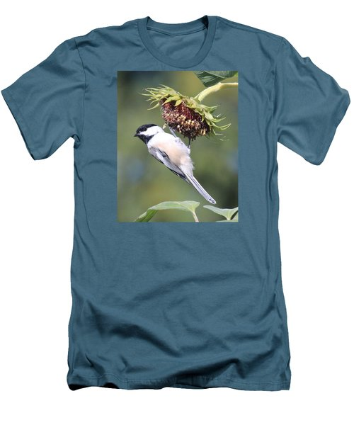 Chickadee On Sunflower Men's T-Shirt (Slim Fit) by Lucinda VanVleck