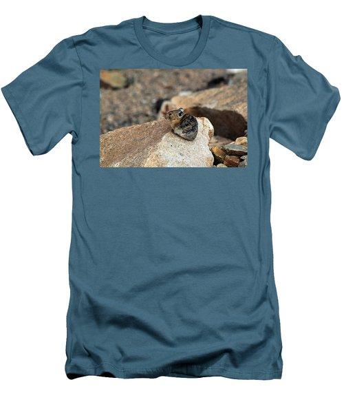 Colorado Pika Men's T-Shirt (Athletic Fit)