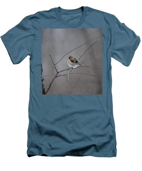Men's T-Shirt (Slim Fit) featuring the photograph Common Redpoll by David Porteus