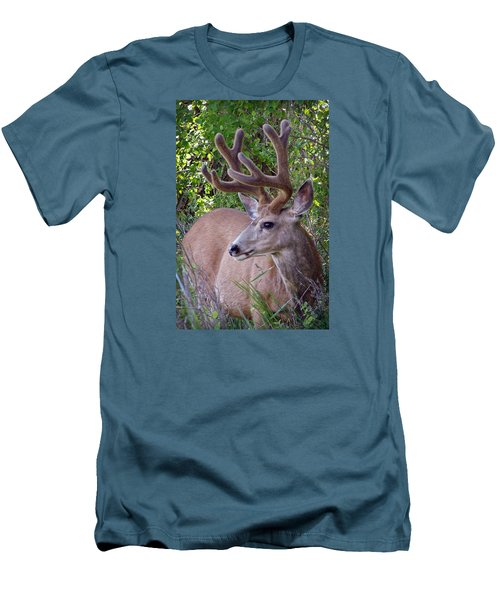 Buck In The Woods Men's T-Shirt (Slim Fit) by Athena Mckinzie