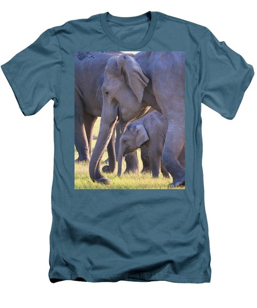 Dhikala Elephants Men's T-Shirt (Athletic Fit)