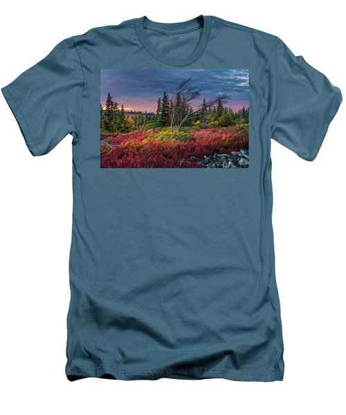 Dolly Sods Windswept Sunset Men's T-Shirt (Slim Fit) by Mary Almond