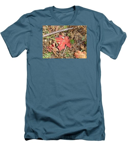 Fall Colors 6307 Men's T-Shirt (Athletic Fit)