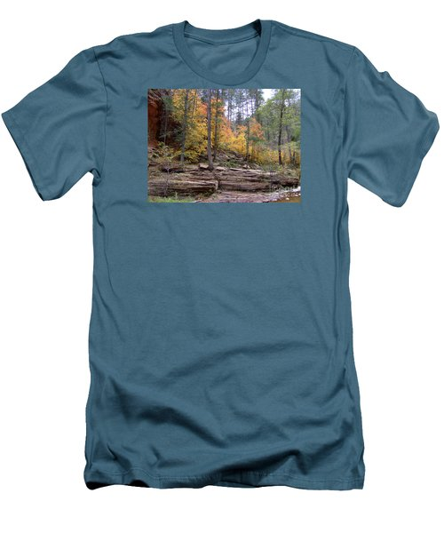 Fall Colors 6463-02 Men's T-Shirt (Slim Fit) by En-Chuen Soo