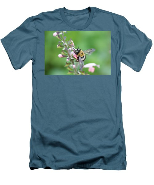 Foraging For Nectar Men's T-Shirt (Athletic Fit)
