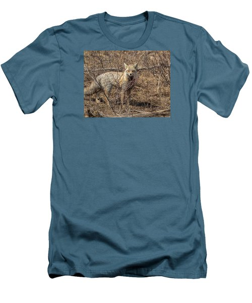 Foxy In Disguise Men's T-Shirt (Slim Fit) by Yeates Photography
