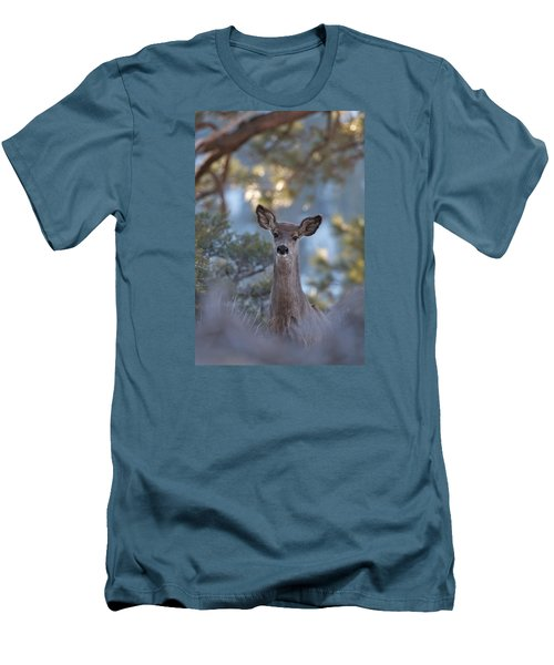 Framed Deer Head And Shoulders Men's T-Shirt (Slim Fit) by Duncan Selby