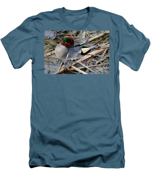 Men's T-Shirt (Slim Fit) featuring the photograph Green-winged Teal by Debra Martz