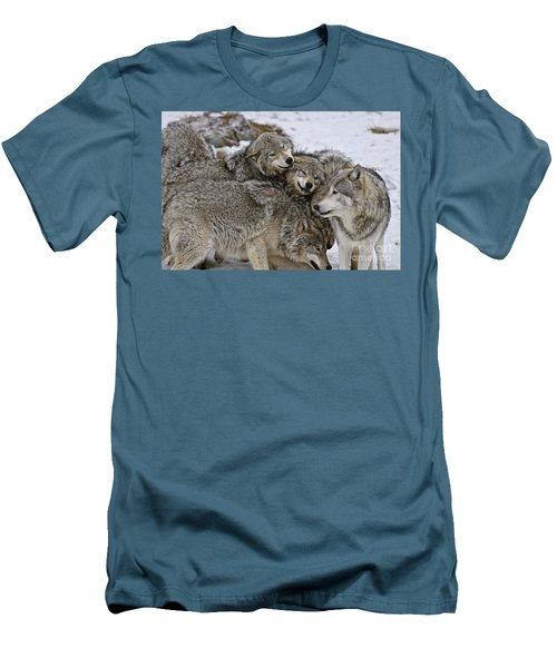 Men's T-Shirt (Slim Fit) featuring the photograph Happy Wolf Pack by Wolves Only