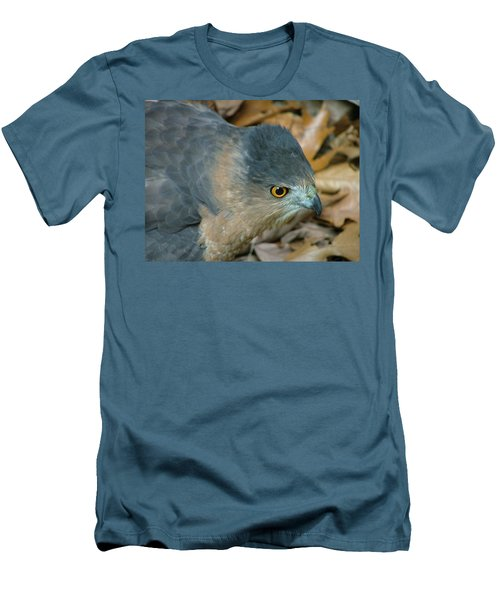 Hawk Eyes Up Close Men's T-Shirt (Athletic Fit)