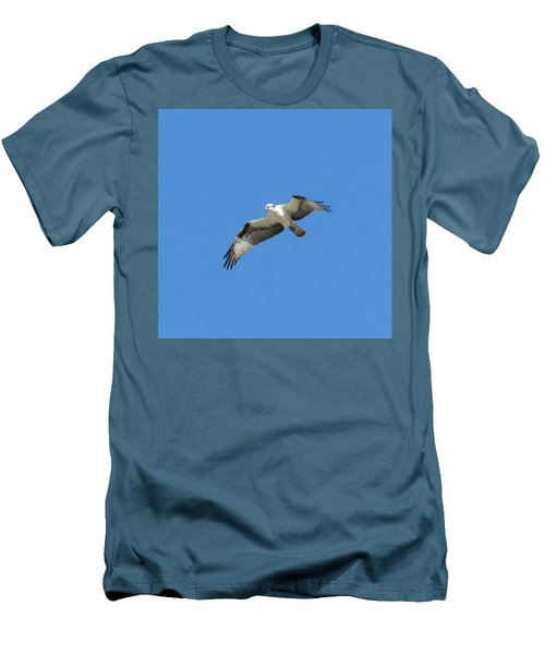 Hawk In Flight Men's T-Shirt (Slim Fit)
