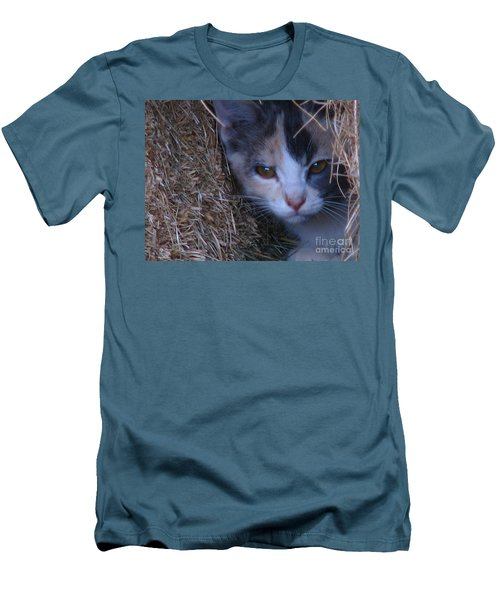 Haystack Cat Men's T-Shirt (Athletic Fit)