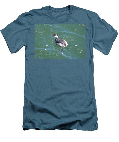 Horned Grebe Men's T-Shirt (Slim Fit) by James Petersen