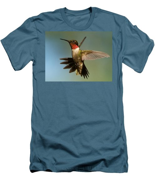 Hummingbird Beauty Men's T-Shirt (Athletic Fit)