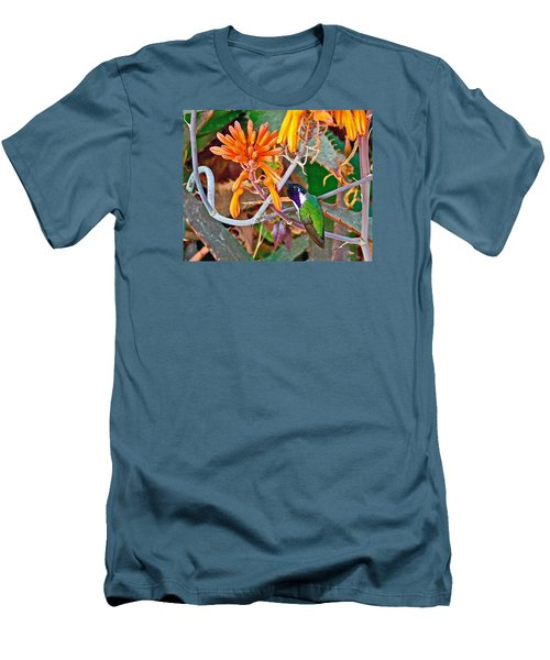 Hummingbird On Aloe In Living Desert In Palm Desert-california Men's T-Shirt (Slim Fit) by Ruth Hager
