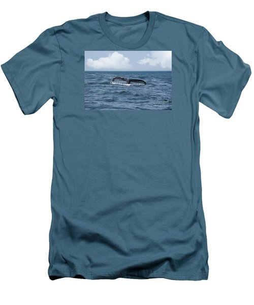 Humpback Whale Fin Men's T-Shirt (Slim Fit) by Juli Scalzi