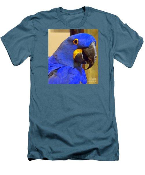Hyacinth Macaw Portrait Men's T-Shirt (Slim Fit) by Lingfai Leung