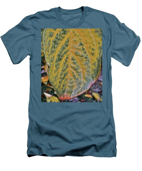 Leaf After Rain Men's T-Shirt (Slim Fit) by Bill Owen
