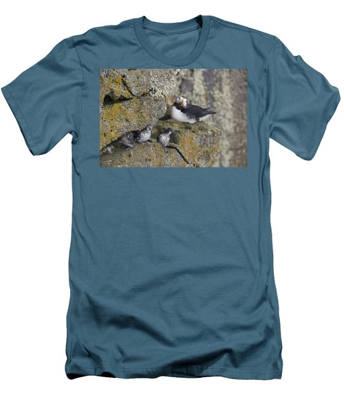 Least Auklets Perched On A Narrow Ledge Men's T-Shirt (Slim Fit) by Milo Burcham