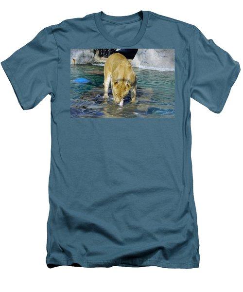 Lion 3 Men's T-Shirt (Athletic Fit)