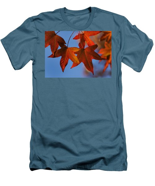 Maple Leaves In The Fall Men's T-Shirt (Slim Fit) by Stephen Anderson